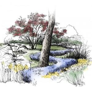 Détail de l'arboretum